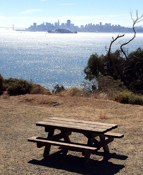 picnic table view of sf