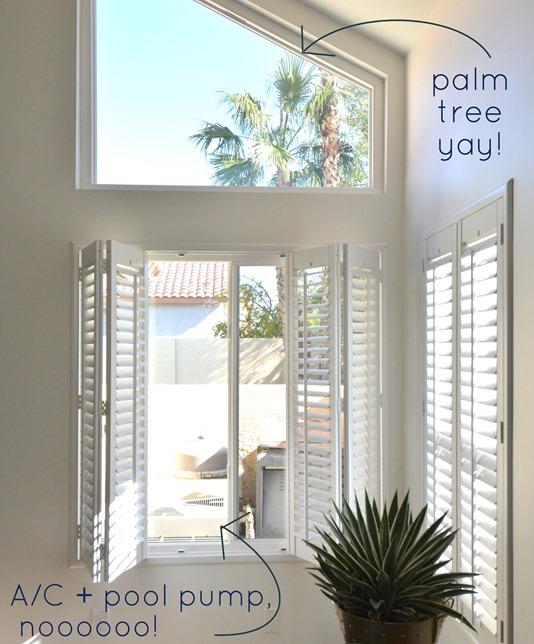 palm tree pool equipment