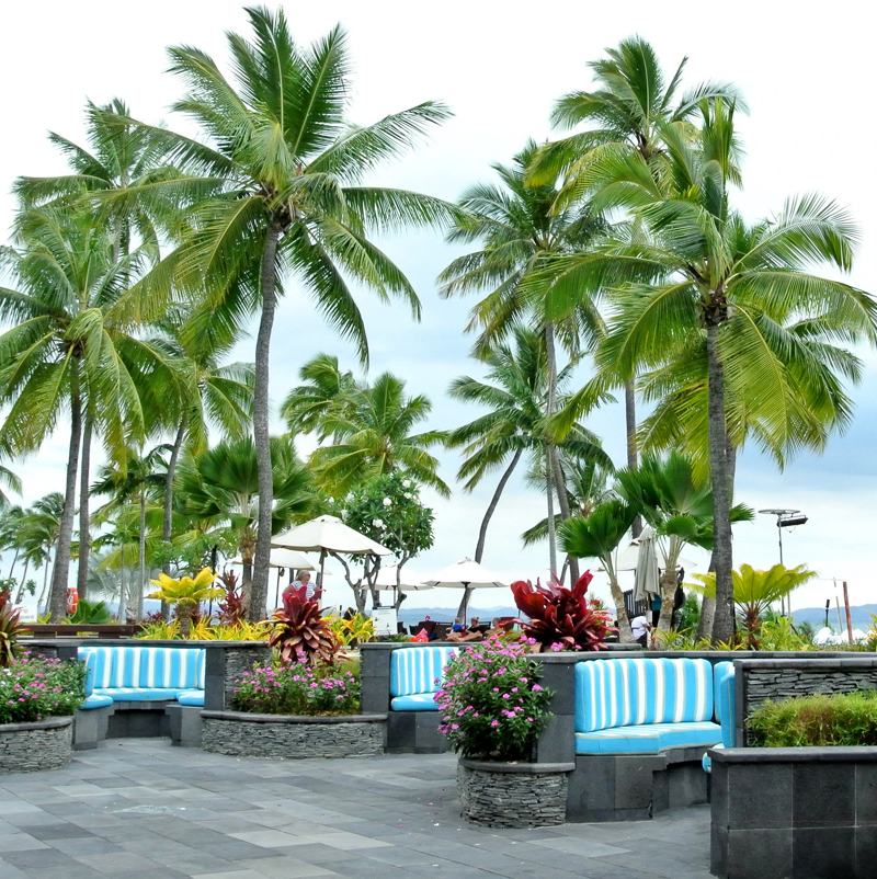 fiji palm trees resort