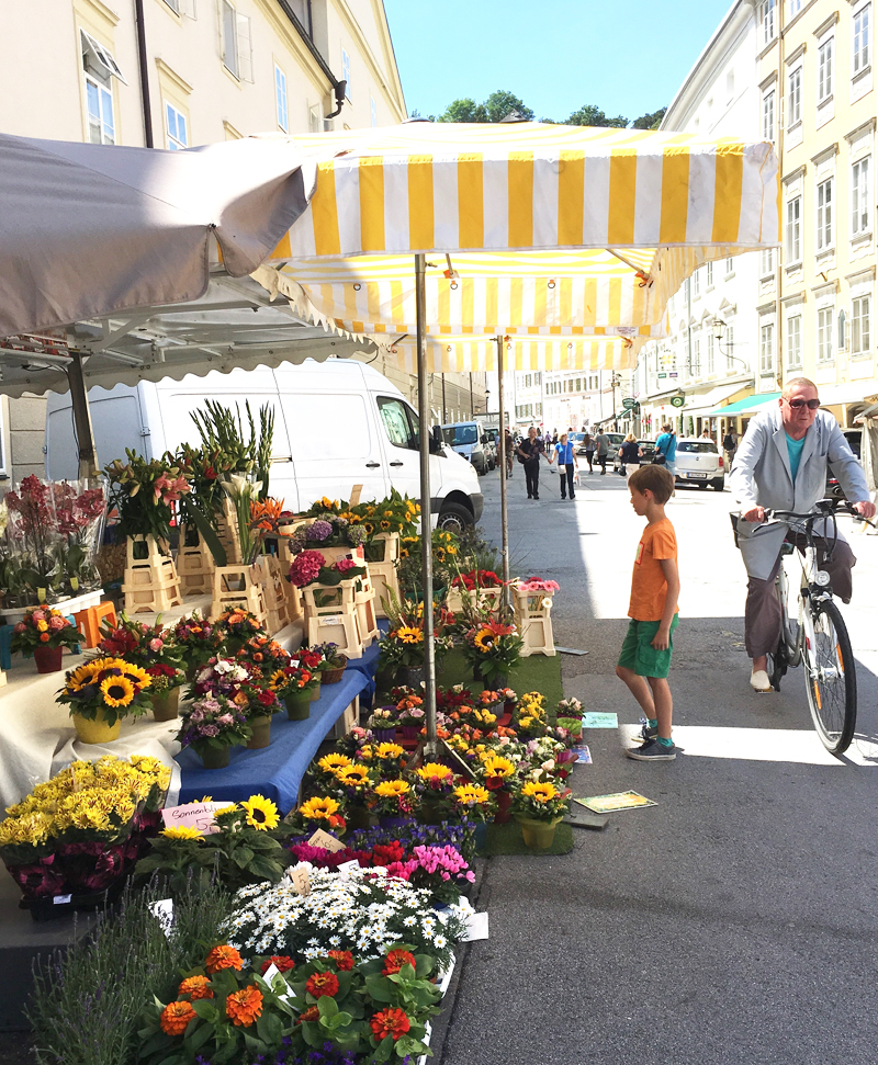 salzburg flowers