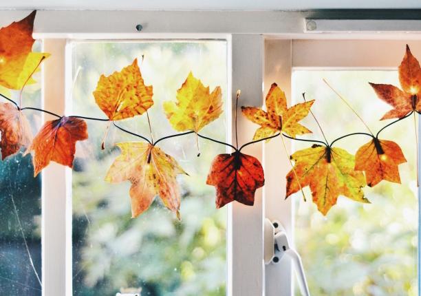 slider leaves