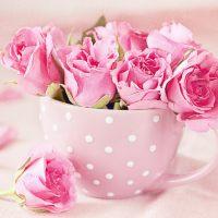 Le bouquet du dimanche #8