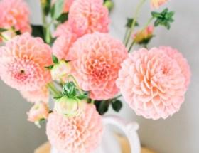 Le bouquet du dimanche #16 : un peu de tout, de rien et surtout un petit bouquet à partager en toute amitié pour célébrer le week-end ♥ #VivreMieux