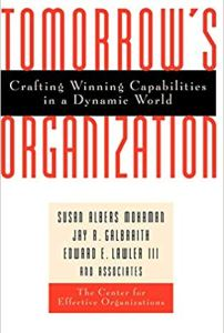 Tomorrow's Organization- Crafting Winning Capabilities in a Dynamic World