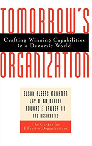 Tomorrow's Organization: Crafting Winning Capabilities in a Dynamic World