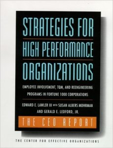 Strategies for High Performance Organizations: The CEO Report
