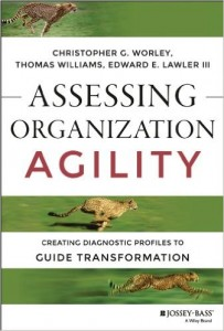 Assessing Organization Agility: Creating Diagnostic Profiles to Guide Transformation