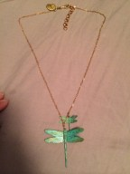 One of the necklaces I bought