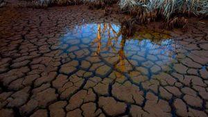 groundwater_byNickMoir