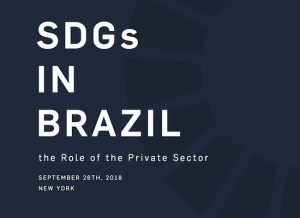 SDGs in Brazil: The Role of the Private Sector