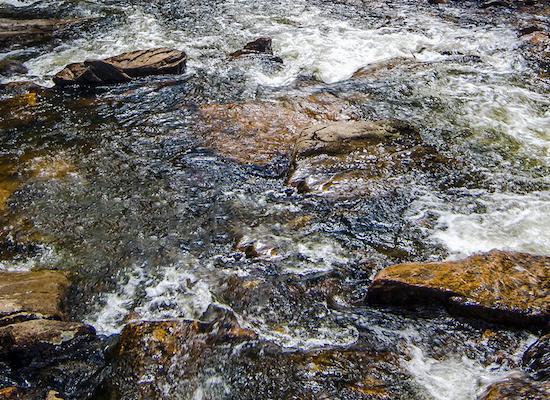 common water language