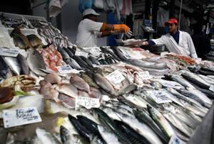 Rastrear el pescado desde el mar hasta la mesa para frenar las capturas ilegales