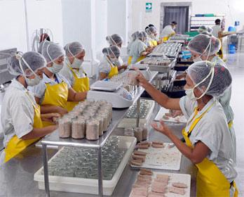 Ecuador: exportadores de atún consolidan sus ventas, respaldados por acuerdo con la UE