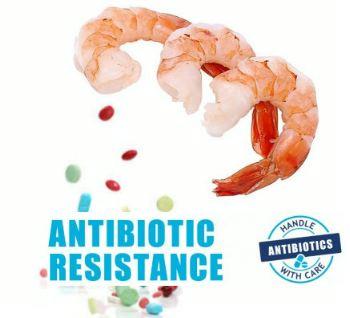 Exportadores temen restricciones de la UE por antibióticos en productos acuícolas
