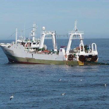 Pesca ilegal: capturan un buque español con 320 toneladas de pescado en la zona exclusiva argentina