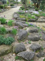 Alpine Garden History Rotary Botanical Gardens with 28+ How To Plant Up An Alpine Trough