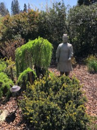 Be Amazed And Inspired At The Soroptimist Garden Tour Theunion within 23+ Dwarf Conifers Offer Big Solutions