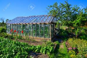 Greenhouse To Rustic Garden And Greenery Stock Photo Picture And intended for [keyword
