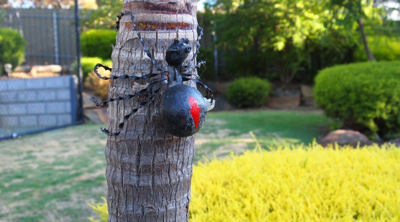 Redback Spider Garden Art Garden Zoo in ucwords]