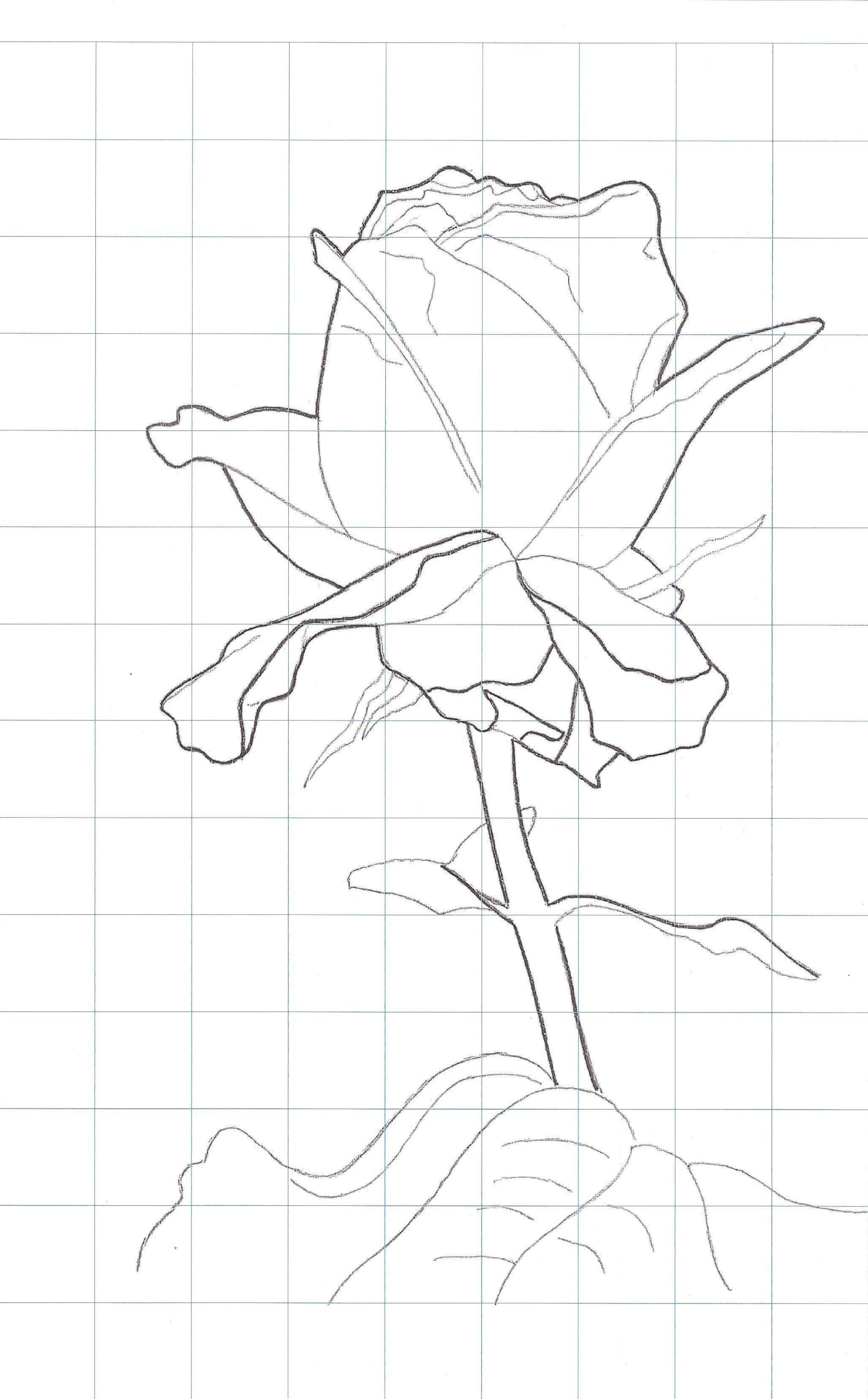 Laminas modelo para pintar flores Plantillas para pintar