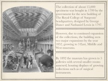hunterian-museum-field-pres-007