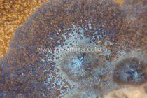 vidrado ceramico com cristais