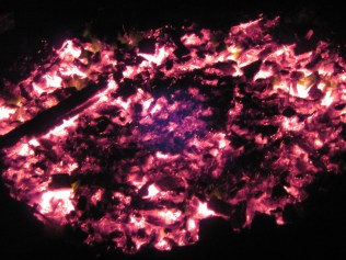 Gazing into a bed of glowing coals.