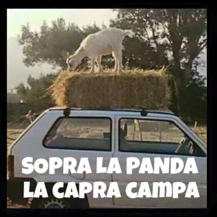 Sopra la panda la capra campa