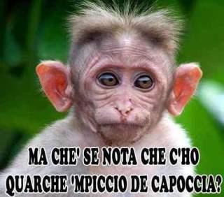 FB_IMG_1451737172231