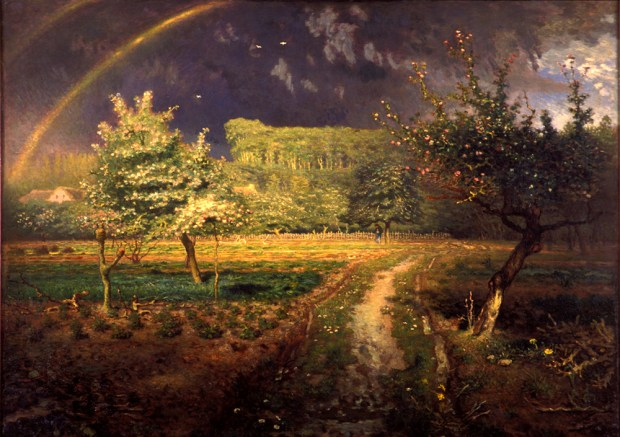 Millet-le printemps-Arc-en-ciel-75 copie
