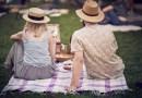 MALI PIKNIK NA GORNJEM GRADU Bosonogo ležanje na travi uz kušanje delicija domaćih OPG-ova