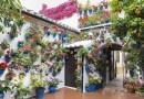 FOTO Volite neobične teglice za cvijeće? No, ipak pripazite prije sadnje koju ćete odabrati