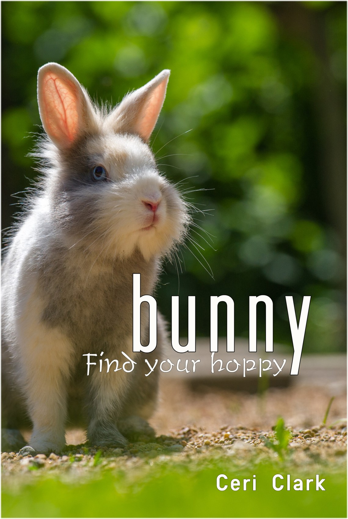 Bunny Find Your Hoppy: A disguised bunny password book