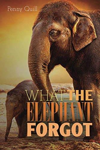 What the Elephant Forgot: A Disguised Password Book With Tabs to Protect Your Usernames, Passwords and Other Internet Login Information | Elephant Design 6 x 9 inches (Quill Password Books)