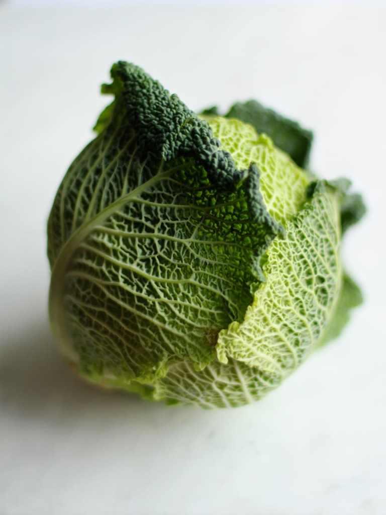 Savoy Cabbage | Natural Kitchen Adventures