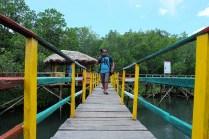 hutan-mangrove-pintu-kota-bitung-3