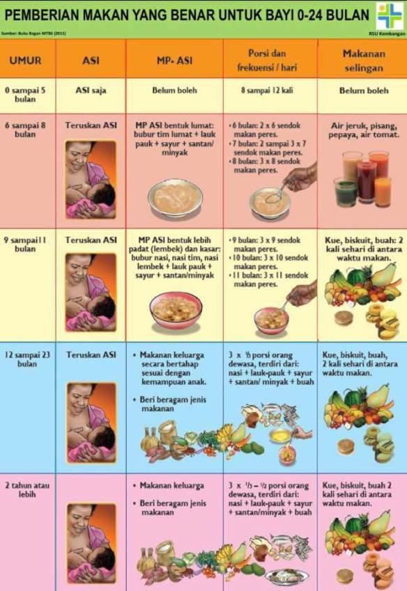 Panduan Pemberian Makanan Pendamping ASI (MPASI) Bayi