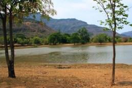 The Baray of Wat Phou, Champasak