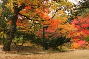 Secret Garden in Autumn