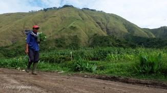 Petani berangkat menuju ladang