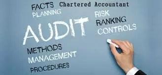 ca, auditors, income tax, gst