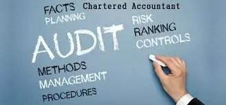 ca, auditors, income tax, gst