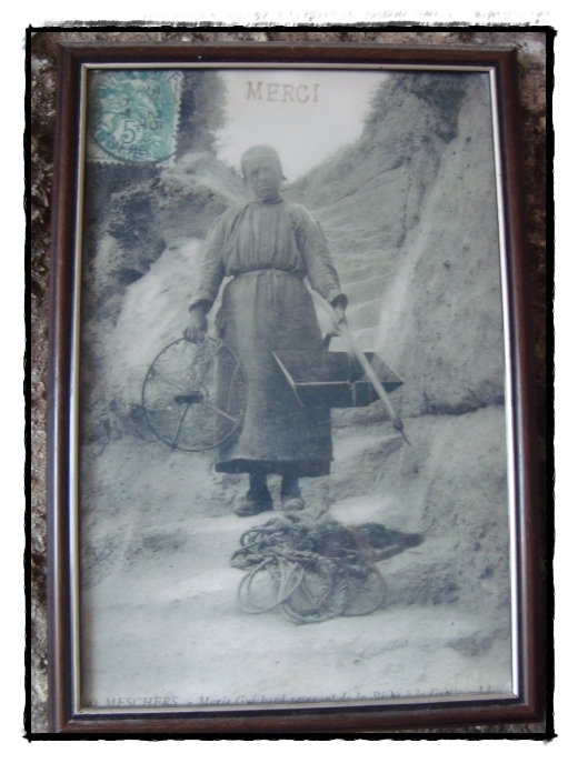 Elle Vendait Des Cartes Postales : vendait, cartes, postales, Visite, Grottes, Régulus, Doudou,, Septembre, GUILLAUMETTE
