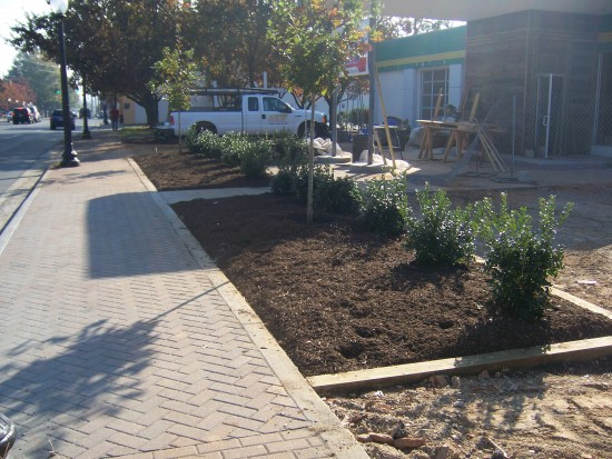 Commercial Services: landscaping