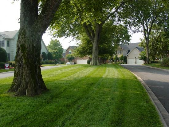 resid lawn maint