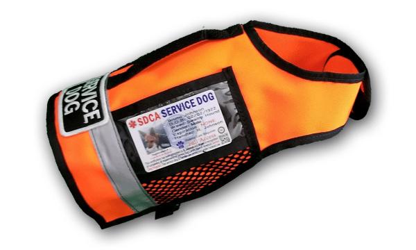 orange sport 2