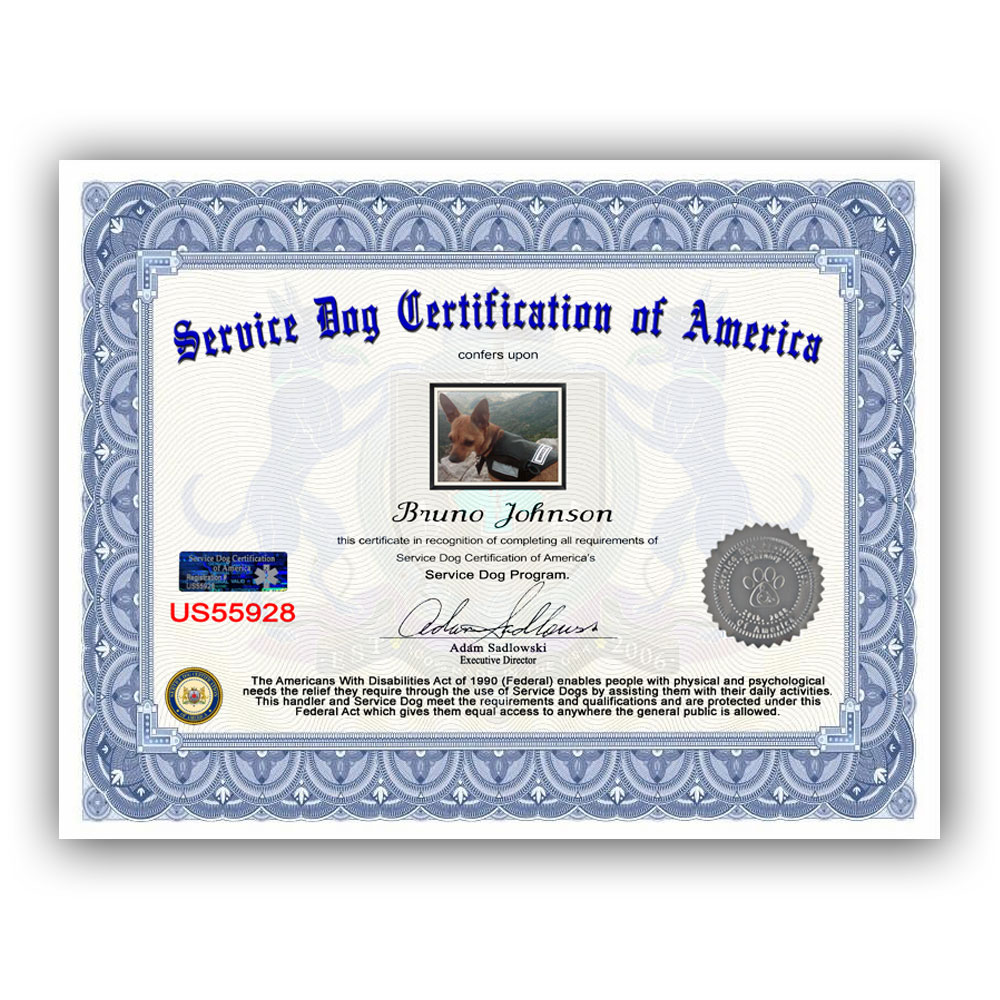 Service Dog Package Selection Service Dog Certification Of America