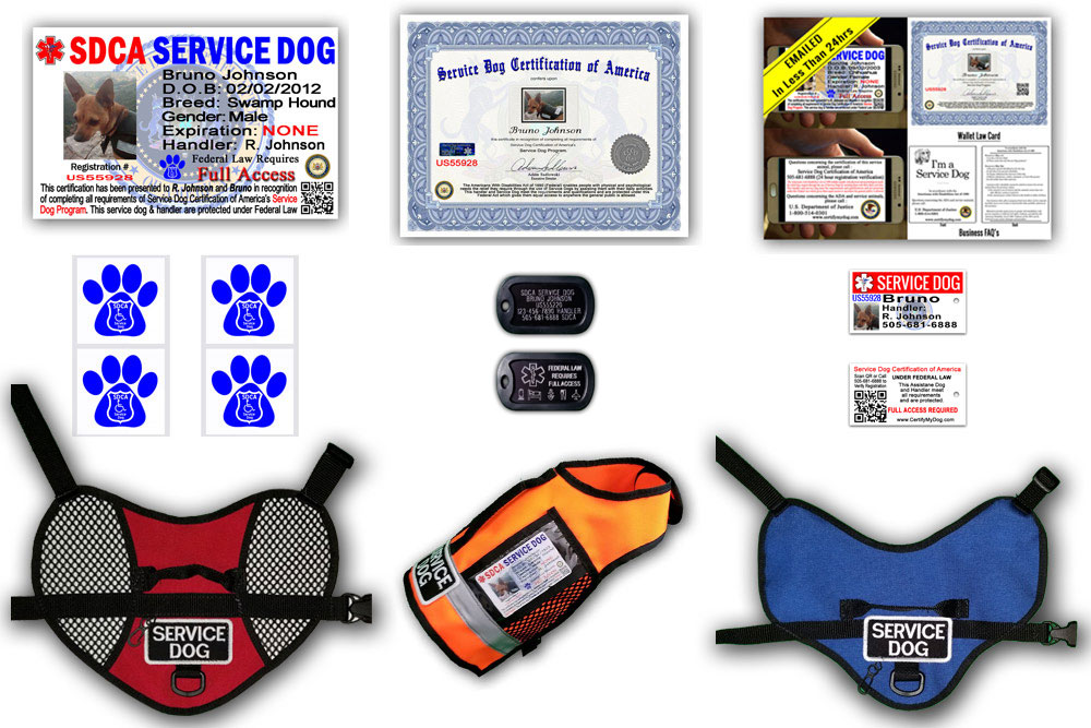 All of the tools to properly identify your Service Dog