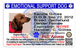 Official emotional support dog id card with picture, hologram and qr coded
