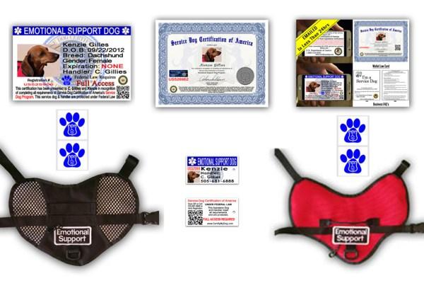 Emotonal-Support-Dog-Pkg-3